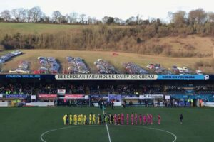 Profile and History of Wycombe Wanderers